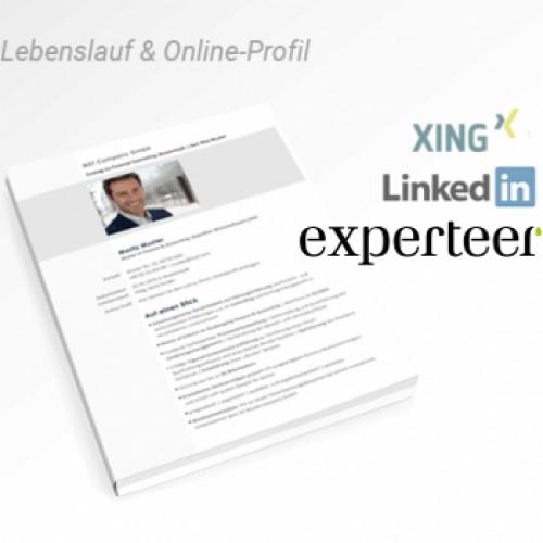Social-Paket Englisch: CV + Online-Profil
